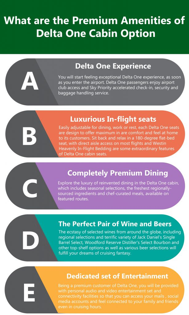 What are the Premium Amenities of Delta One Cabin Option?